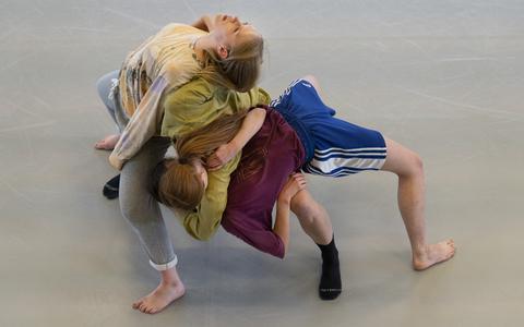 Dansgezelschap Ivgi & Greben