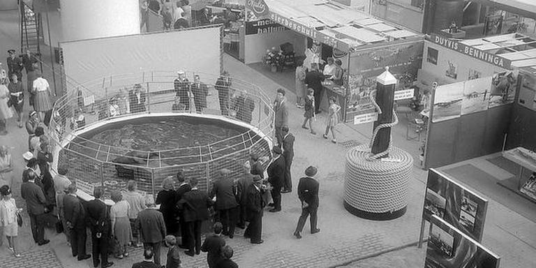 Ter gelegenheid van de opening van de Frieslandhal werd in 1963 de Frisiana georganiseerd. Mous: ,,Een vlootschouw van het proces van snelle modernisering waar Friesland in verzeild was geraakt.''