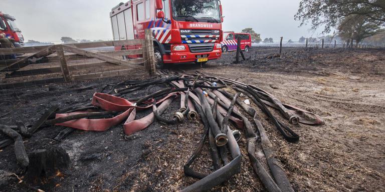 De verbrande brandweerslangen op de heide bij Wateren. FOTO RENS HOOYENGA