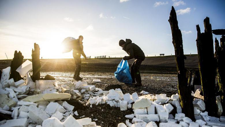 Op de Waddendijk tussen Lauwersoog en Moddergat ruimen tientallen vrijwilligers piepschuim op dat op 3 januari massaal het land opwaaide. Het piepschuim is verpakkingsmateriaal van goederen die van de MSC Zoe zijn gevallen. FOTO ANP/SIESE VEENSTRA