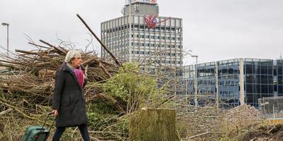 Bomenkap bij het station in Leeuwarden. FOTO LC/ARODI BUITENWERF