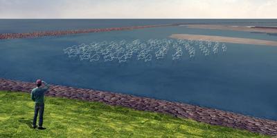 Blije Vissen sieren de migratierivier.