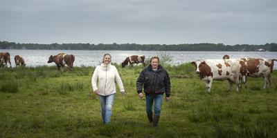 Sandra en Harald Woldring tussen hun Roodbont. FOTO REYER BOXEM