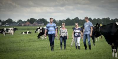 Sjoerdtje (tweede van links) met man Jan, zwager Ele Jan en schoonzus Bea tussen de koeien in de wei. FOTO JILMER POSTMA