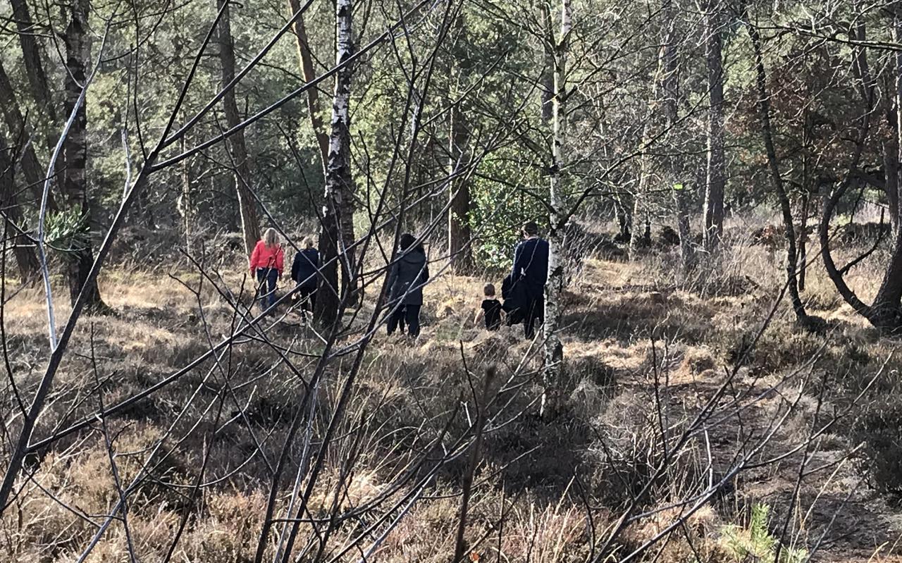 Wandelen op afstand door de bossen bij Beetsterzwaag. FOTO LC