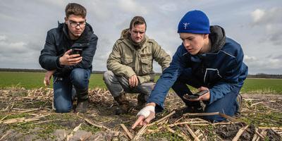Vogelwacht Mike van der Schaaf (midden) bekijkt een kievitsnestje met Julian Vlok (links) uit Steenwijk en Jeffrey van der Weg uit Scharsterbrug. De Nordwin-leerlingen registreren de vondst met hun telefoonapp. FOTO NIELS DE VRIES