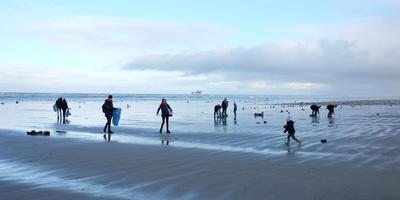Vrijwilligers, ambtenaren en loonbedrijven maken het strand van Ameland schoon. Hier was het 3 januari. Er spoelt nog steeds troep aan. FOTO BENNE HOLWERDA