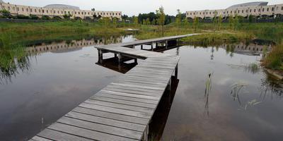 De Heerenveense wijk Skoatterwâld. FOTO ARCHIEF LC