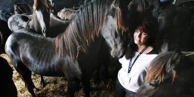 Marijke Akkerman doet het regelwerk voor de paarden. FOTO NIELS WESTRA