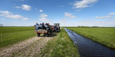 Friese veenweide aan de Beetsterdyk in Aldeboarn. FOTO ARCHIEF LC