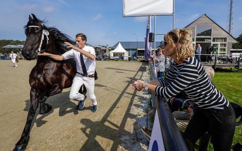 Modelmerrie Marrit fan de Klaster van Lammert Postma uit Boornzwaag davert langs het publiek.