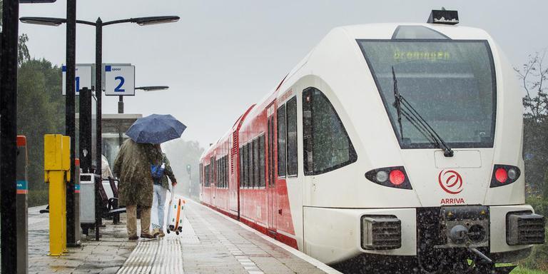 Arriva-trein op het station van Feanwâlden. FOTO MARCEL VAN KAMMEN