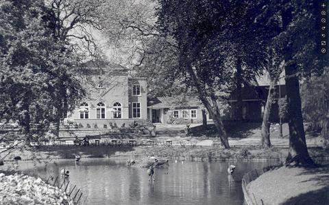 De Prinsentuin in 1954, een jaar voor de tragische dood van Klaas Mosselman