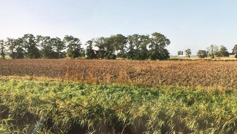 Een van de laatste ingrepen tussen Bitgum en Bitgummole. Hier nog met bomen. FOTO SIKKE LAUTENBACH