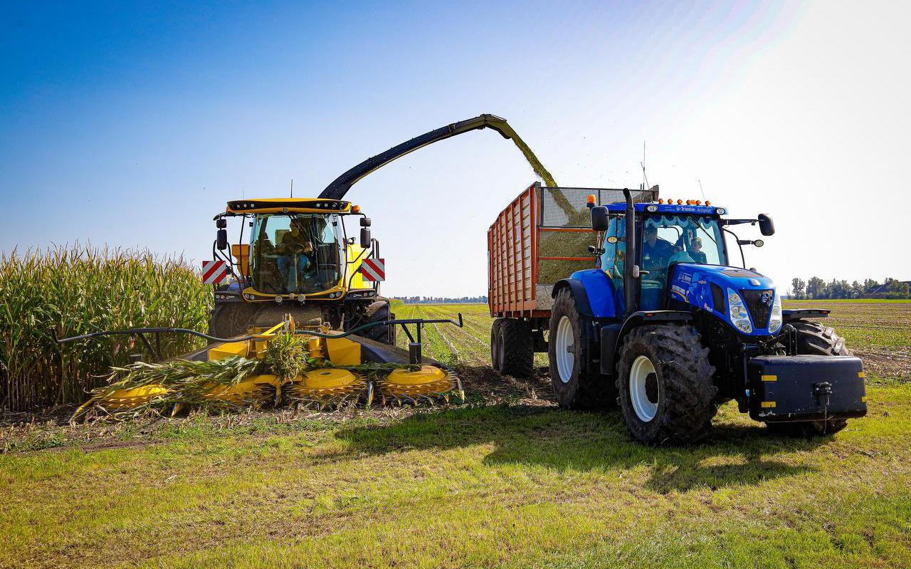 Een maïshakselaar van loonbedrijf A. Rijpma versnippert maïskolven op het land van de familie Galama in Tjerkgaast.