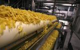 Frietfabriek Lamb Weston geeft inwoners Oosterbierum patatje cadeau