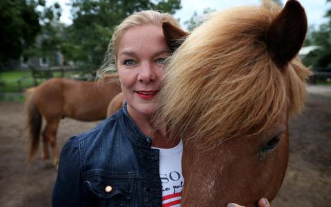 Paardenpraat uit Rijs