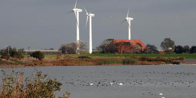 Windturbines uit 1995 bij Houw, die na 2020 door veel hogere en zwaardere zullen worden vervangen.