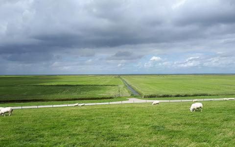 Fietsroute: spelen met de wind bij Holwerd