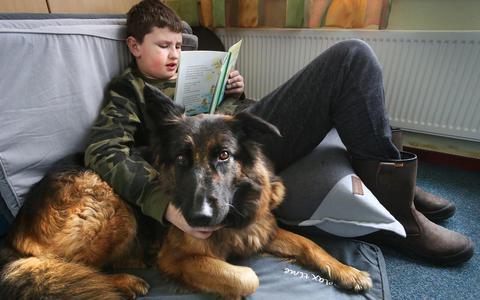 Voorlezen aan een hond? Leerlingen van It Twalûk maken grote stappen