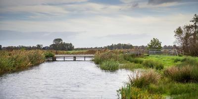 De Kraanlannen bij De Veenhoop, een van de natuurcompensatiegebieden rond het Polderhoofdkanaal. FOTO JILMER POSTMA
