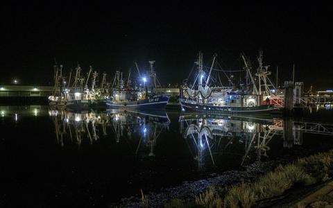 Zeehavens aantrekkelijk voor criminaliteit: 'We zijn een verbinding met de buitenwereld'