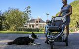 Dertig inwoners van Wirdum in één klap Leeuwarder