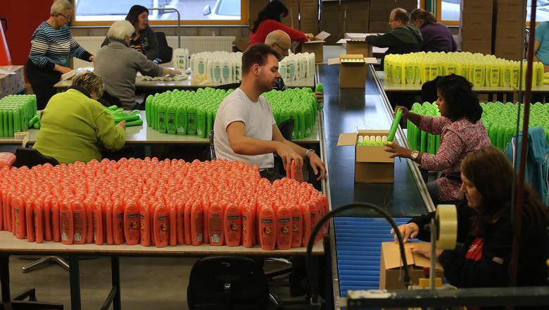 Medewerkers van Caparis pakken shampoo in in de vestiging aan de Orionweg in Leeuwarden. FOTO NIELS WESTRA
