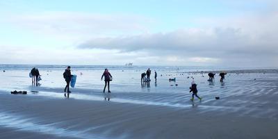 Opruimen op het strand van Ameland.