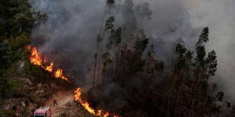 Brandweer Portugal bestrijdt reeks branden