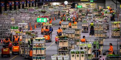 Bloemenexport herhaalt recordomzet