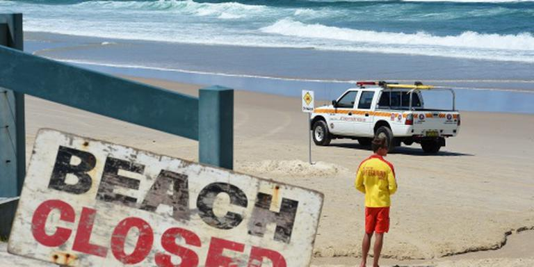 Surfer verliest been door haai