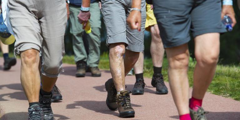 'Nog nooit zo veel wandelaars in Nederland'