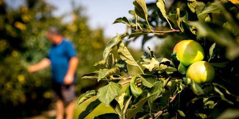 Brussel komt boeren tegemoet wegens droogte