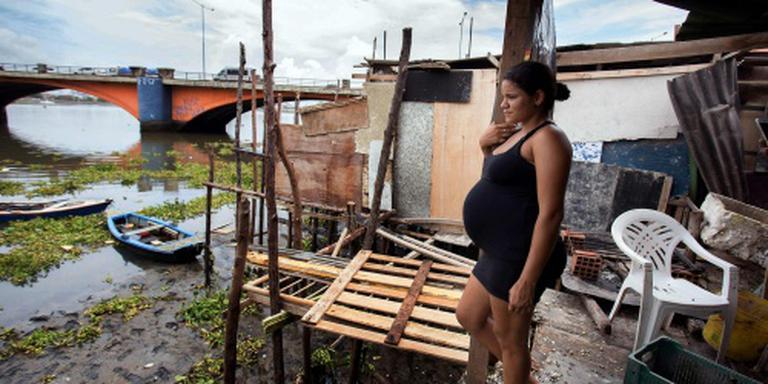 Offensief tegen verspreiding zika-virus