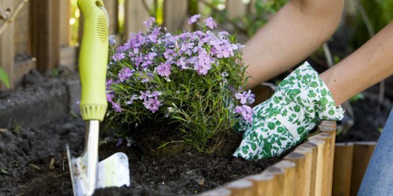 Planten of tegels in voortuin 'besmettelijk'
