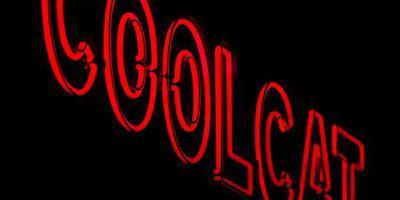 CoolCat vraagt faillissement aan