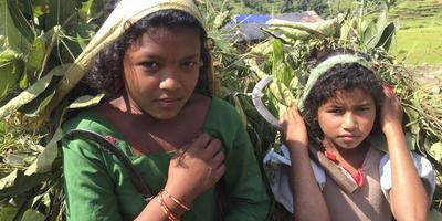 'Acties voor Nepal zijn
