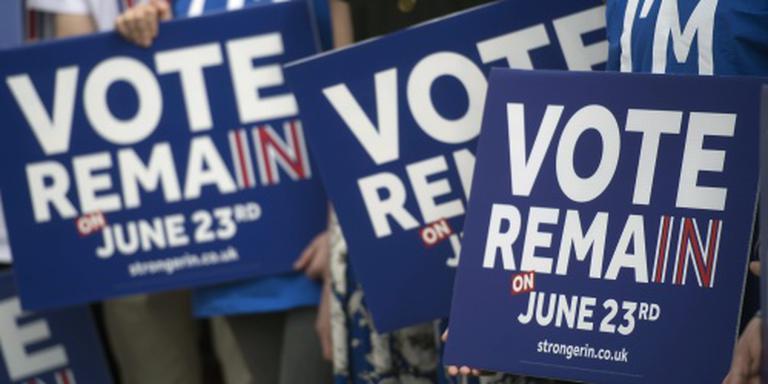 Britse partijen leggen Brexit-campagne stil
