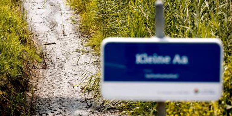 Ook Brabant in actie voor beschermde beekvis