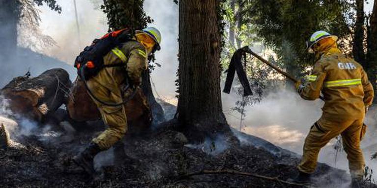 Brand Algarve: Nederlanders niet in problemen