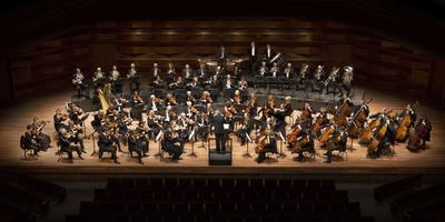 Serie over Frysk Orkest bij LC en Omrop Fryslân