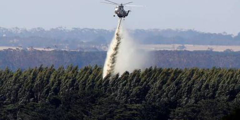Bosbrand teistert zuidereiland Nieuw-Zeeland