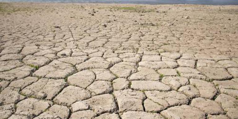 Natuurmonumenten: verhoog grondwaterpeil