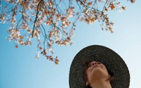 Oosterbierum krijgt geld voor bermflora en andere fleur