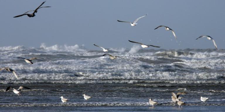 Vijf verdrinkingen voor Engelse kust