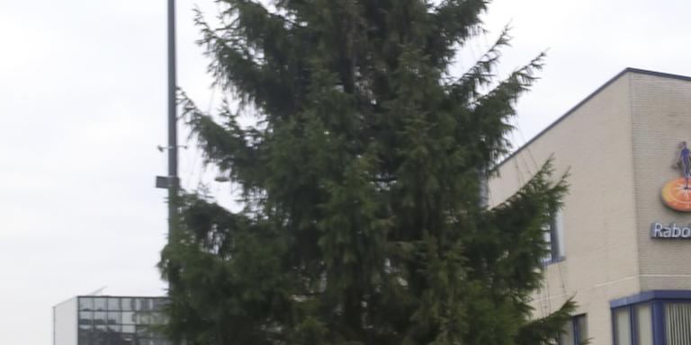 De kerstboom bij de Lawei.
