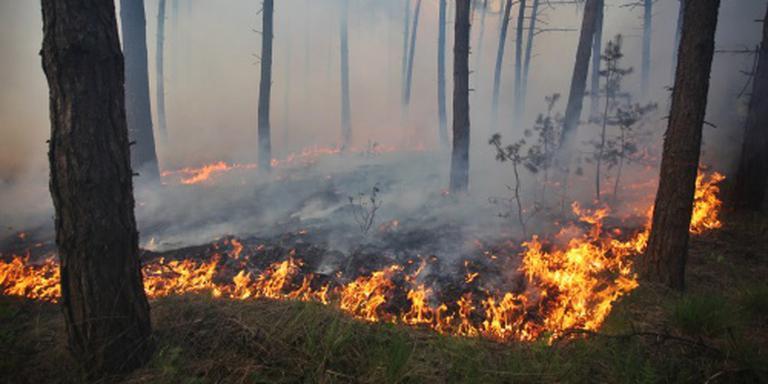 Iets minder risico op natuurbranden