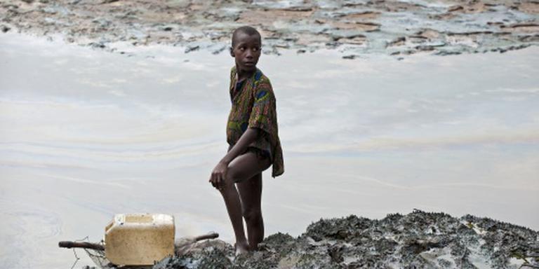 Nigeria pakt 'Deltawrekers' op