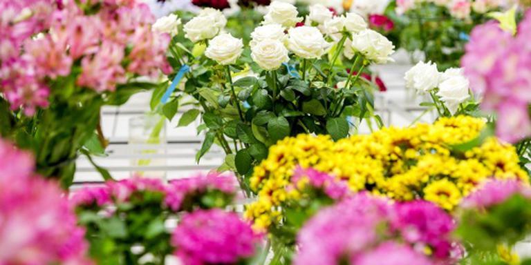 Bloemenbranche positief over moederdagverkoop